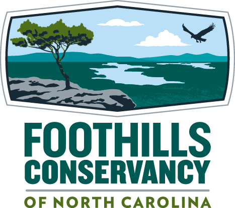 Foothills transparent logo