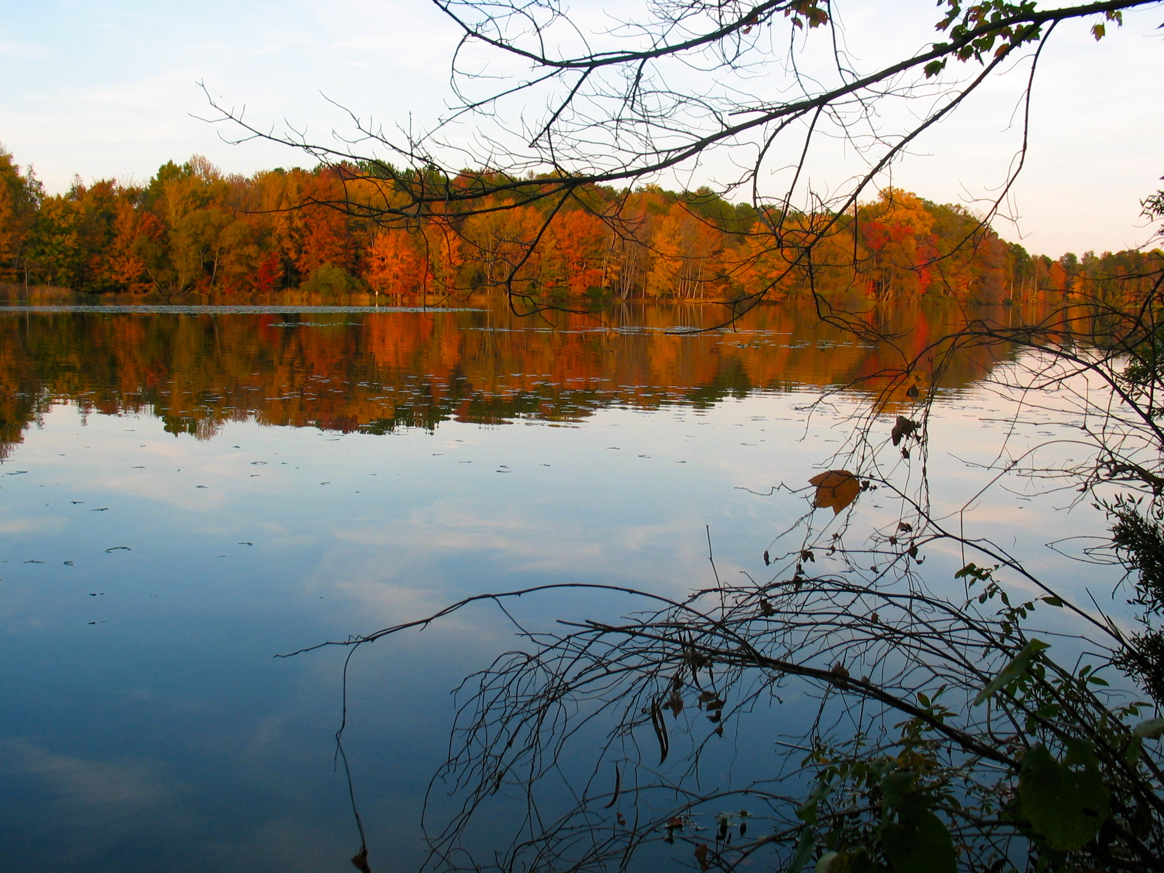 Protecting North Carolina's Fall Splendor