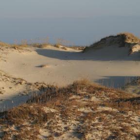 HABE dunes